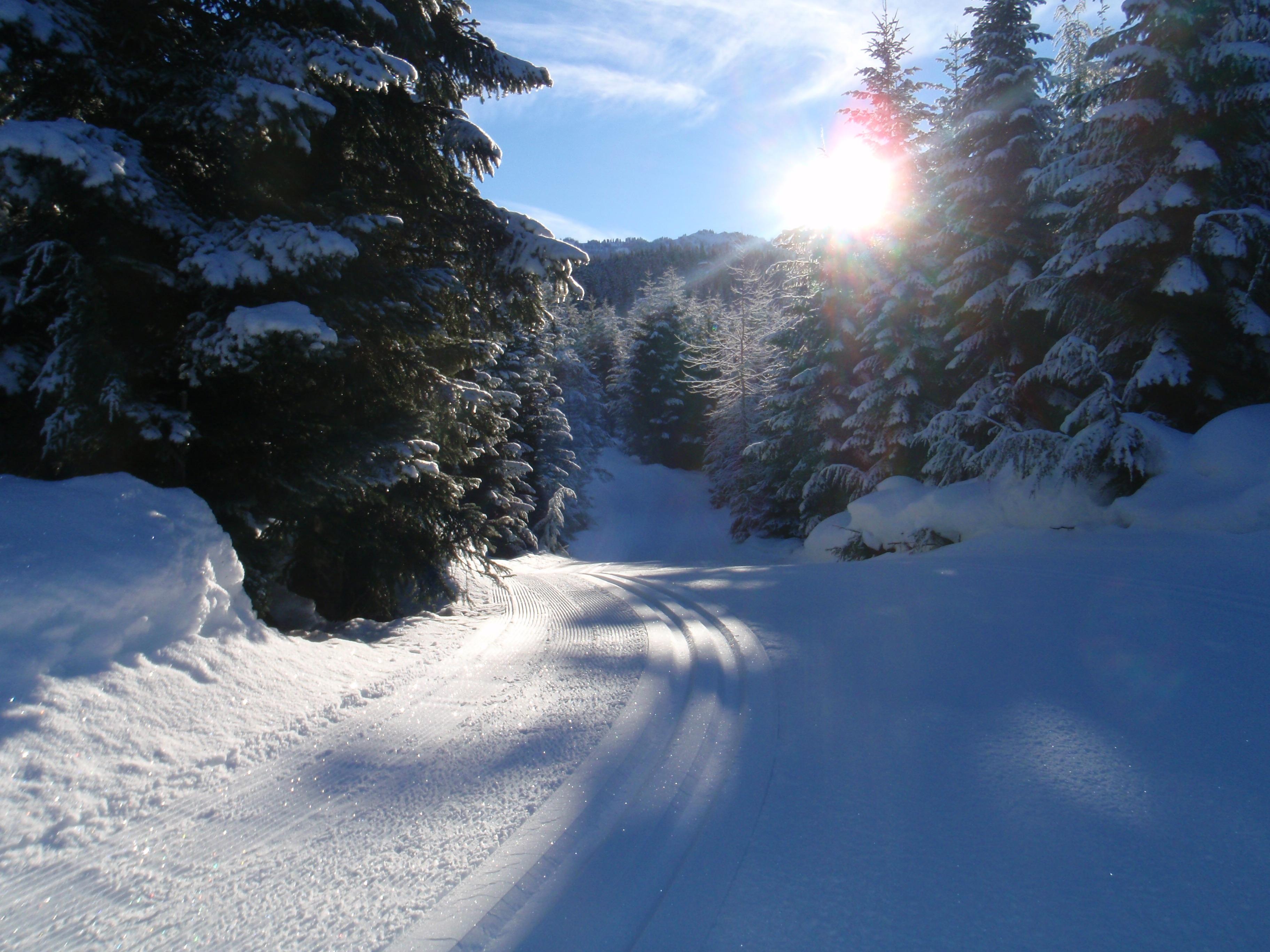Morning Sun, Ski Callaghan