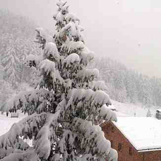 Winter is here!, Sainte Foy