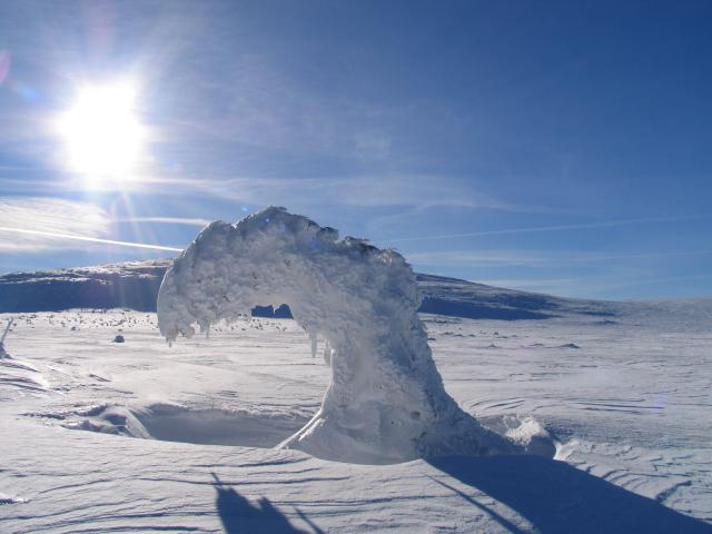 Zieleniec snow