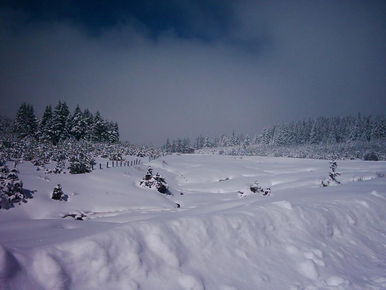 Kartal Highland, Kartalkaya