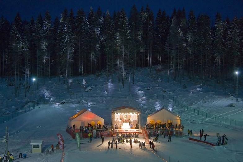 Igora snow