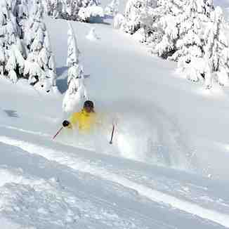 Powder Day!, Apex Resort