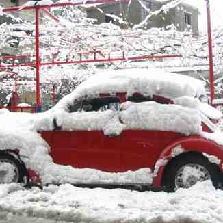 A car in Sir Dannieh - Lebanon, Cedars