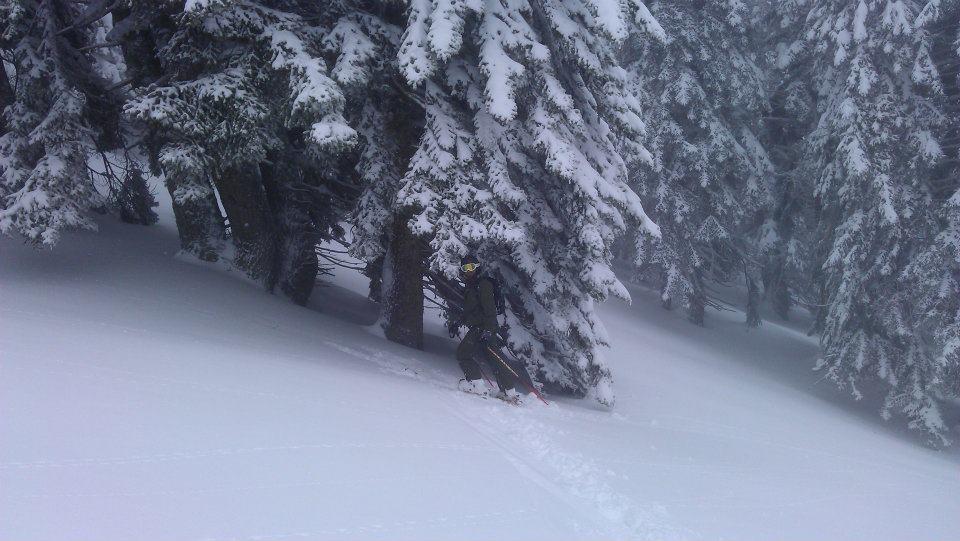 Lost in the trees, Kalavryta Ski Resort
