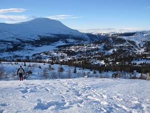 Crosscontry skiing, Gaustablikk photo