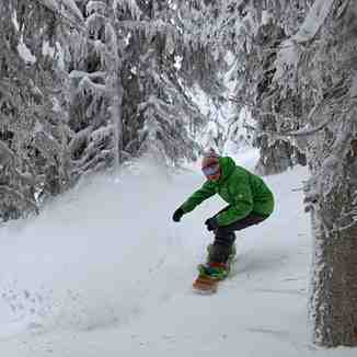 Excellent January Conditions, Sun Peaks