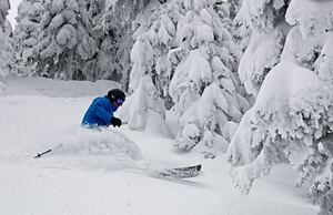 Deep Powder on Jan 3rd 2014, Sun Peaks photo