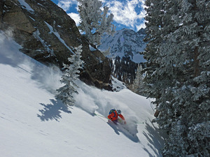 POW! in Grizzly Gulch, Alta photo