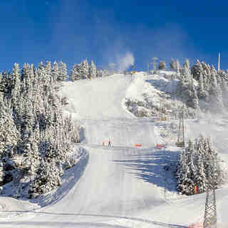 Grouse Mountain Snow: Sunny Friday!