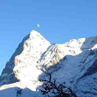 Eiger and the Moon, Wengen