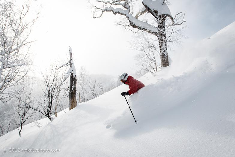 Skiing Furano Powder