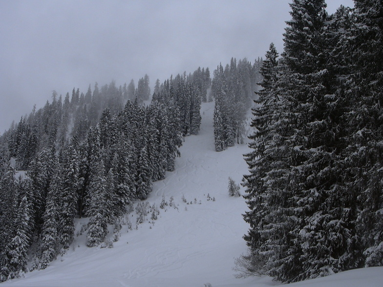 Great terrain in Klosters