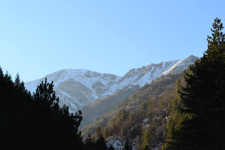 Karadzica, Karadjica