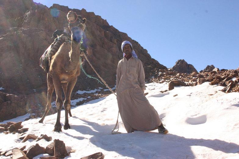 snow bedouins, Jabal Katherina