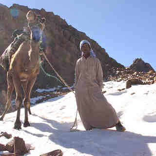 snow bedouins, Jabal Katherina