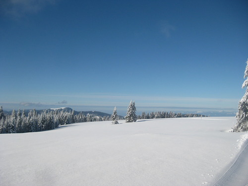 Todtnauberg Ski Resort by: andyi