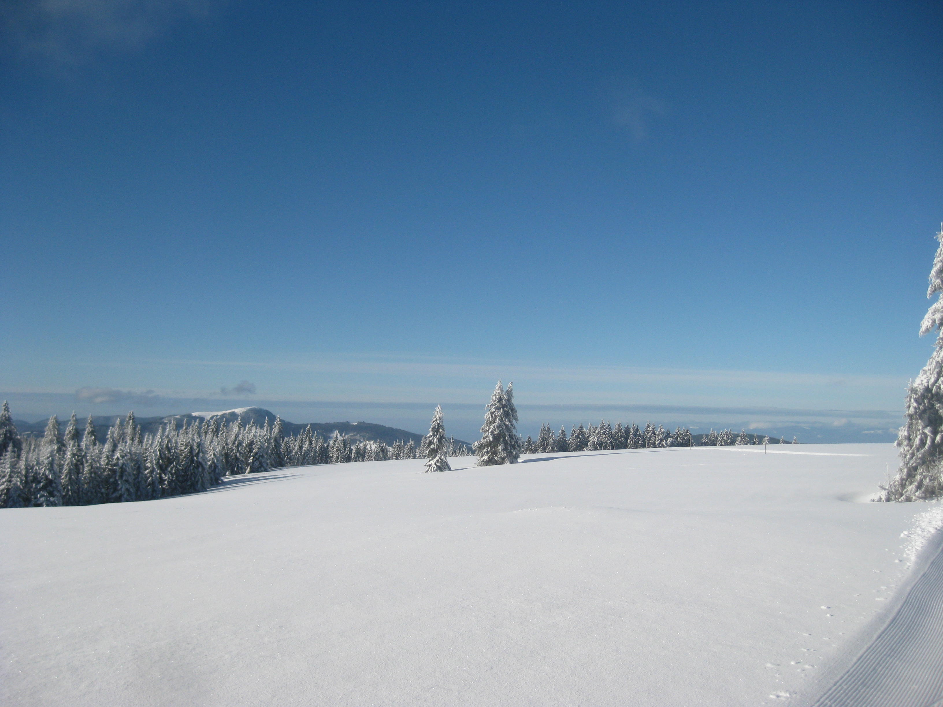 Stübenwasen Gipfel, Todtnauberg