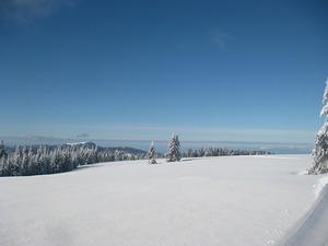 Stübenwasen Gipfel, Todtnauberg photo