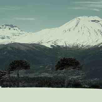Volcanes Tolhuaca y Lonquimay, abajo Malalcahuello, Corralco (Lonquimay)