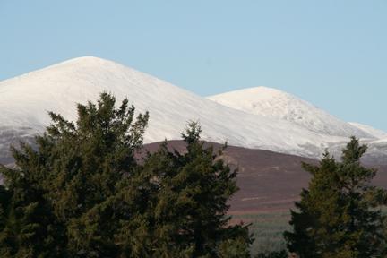 Knockmealdowns mountains, Knockmealdown (Knockmealdown Mts)