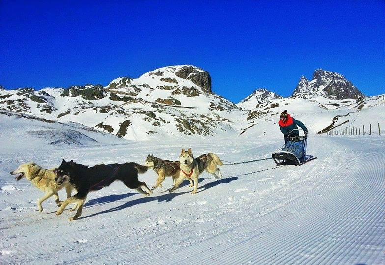 MUSHING FORMIGAL