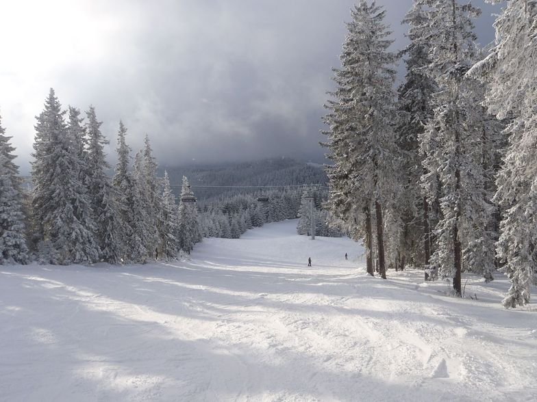 total white, Pamporovo