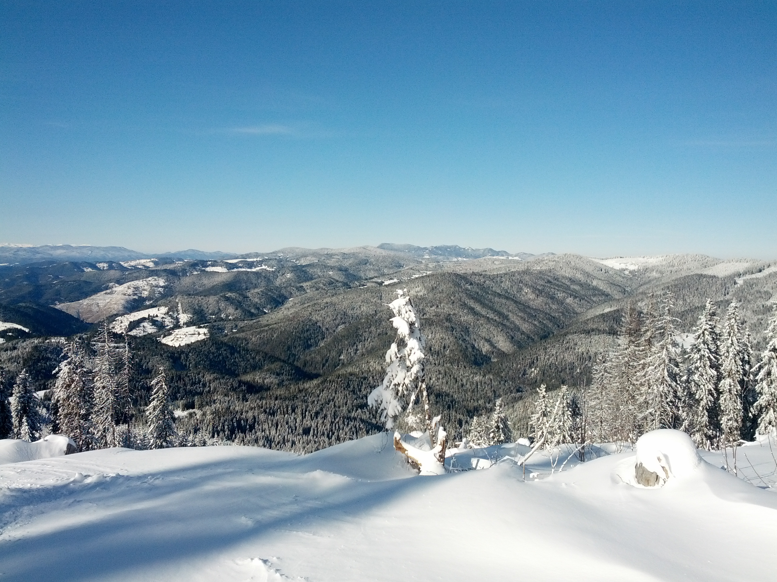 First day of 2015, Pamporovo