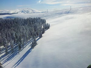 Vidra Transalpina photo