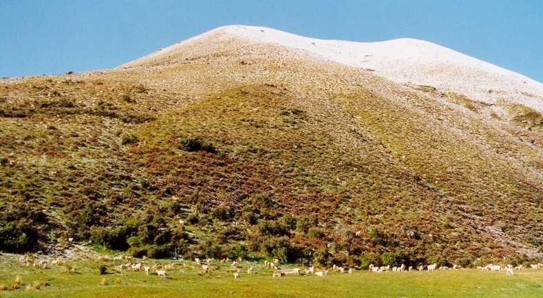 Near Mount Cook - New Zealand, Aoraki-Mt Cook