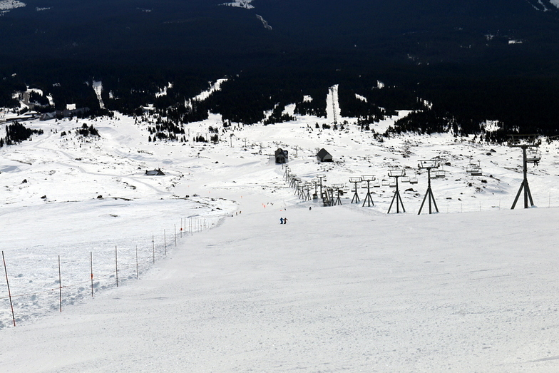 Palmer Glacier is great!, Timberline