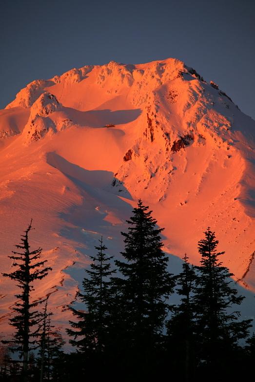 """Mt Hood """"Alpen glow"""", Timberline"""