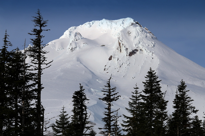 """Mt Hood with a large """"O"""", Timberline"""