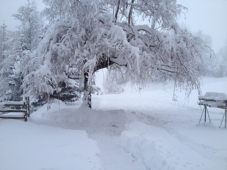 Fresh Snow, Le Corbier (Les Sybelles)