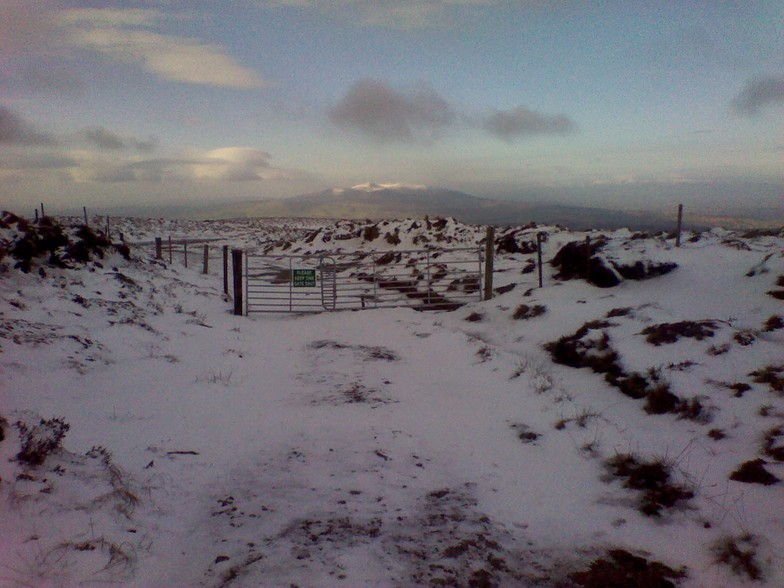 View of Knockmealdown and Knocknafallia from Seefin., Knockmealdown (Knockmealdown Mts)