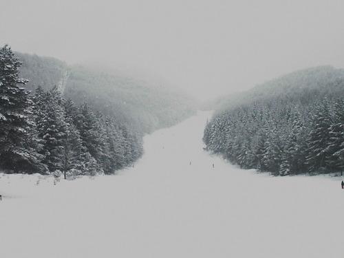 Blidinje Ski Resort by: ivan