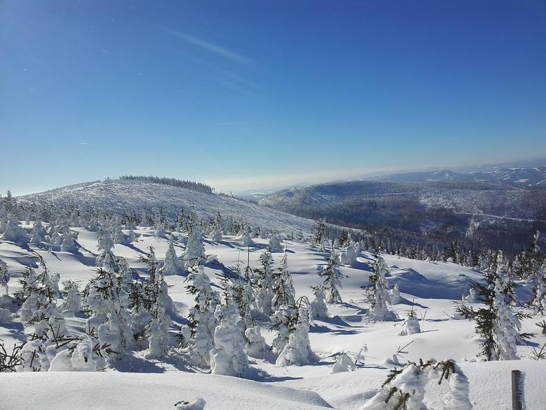 Szczyrk snow