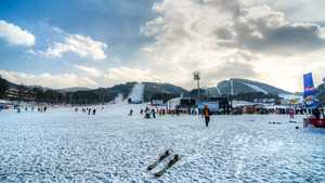 Yongpyong Ski Resort, PyeongChang-Yongpyong photo