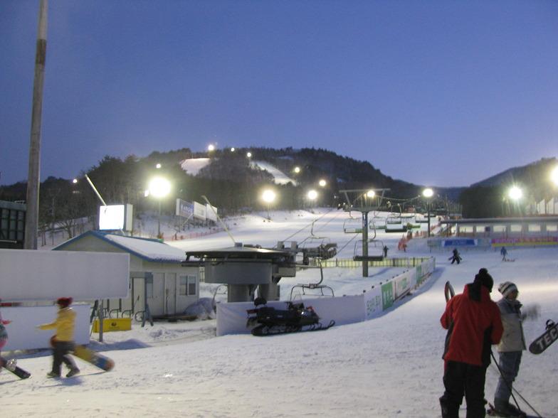 Night skiing at Yongpyong Resort, PyeongChang-Yongpyong