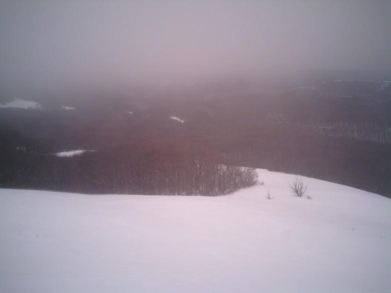 North slope of Beden-Kir, Ay-Petri