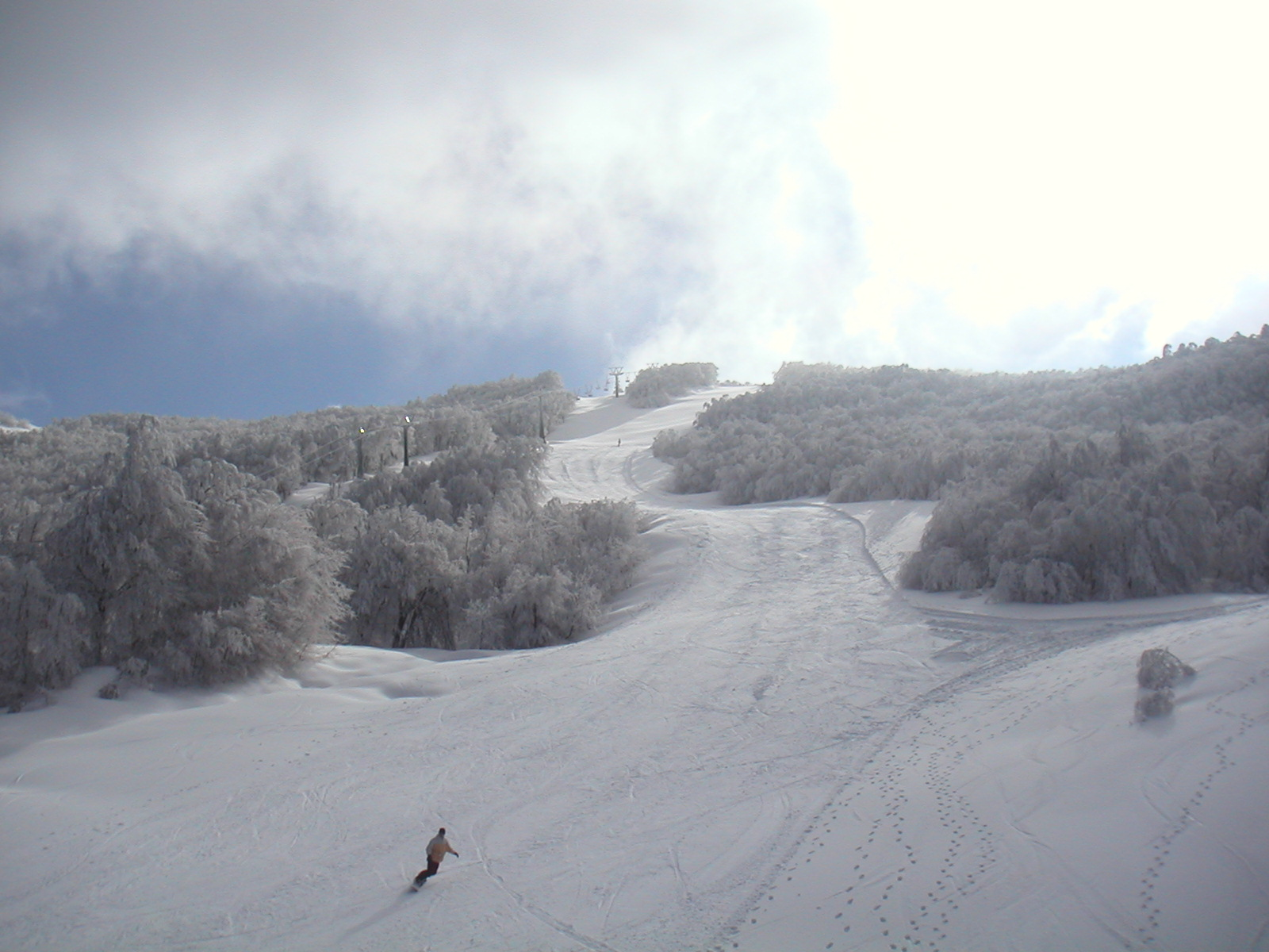 Falconera slope, Pelion resort, Greece, Pilion
