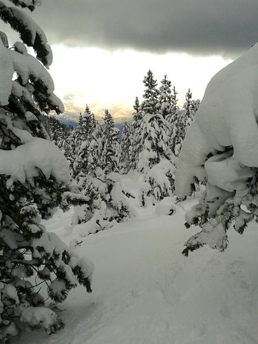 Masella Ski Resort by: Xavier Bonet
