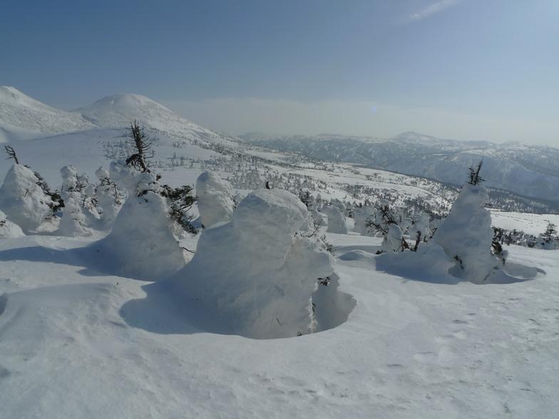 Snow monsters, Hakkoda