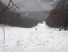 Hungary -East Europe, Skiresort Dobogok, Dobogókő Sícentrum