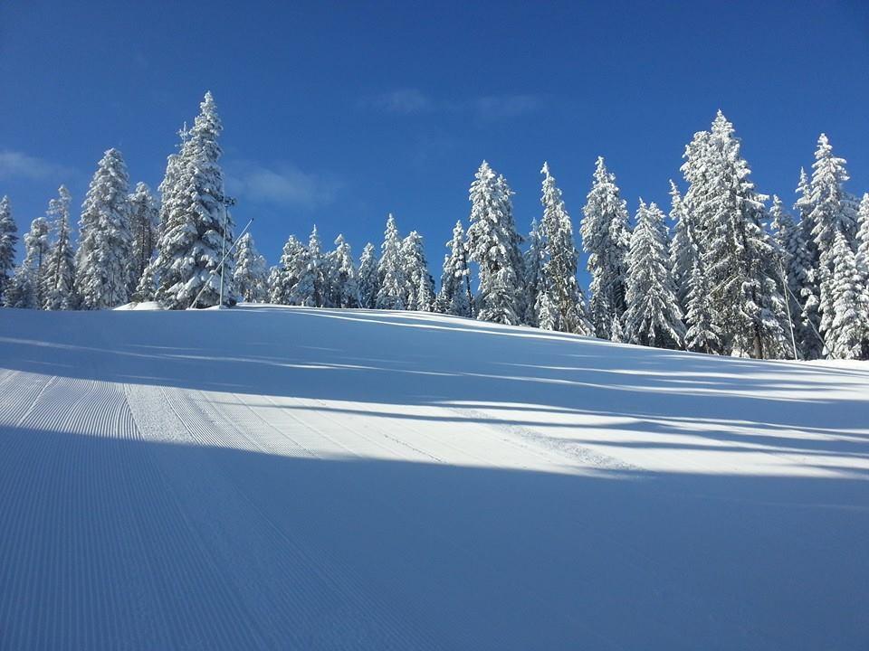 Amazing winter, Borovets