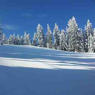 Amazing winter, Borovets