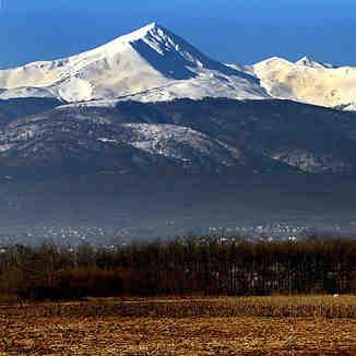 High White, Brezovica
