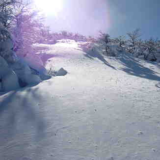 El bosque oculto, Monte Bianco