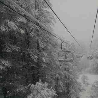 Bosque nevado, Nevados de Chillan