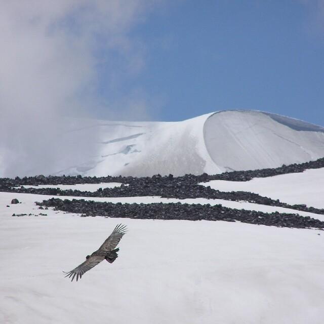 Volcan Chillan flight of the condor, La Parva