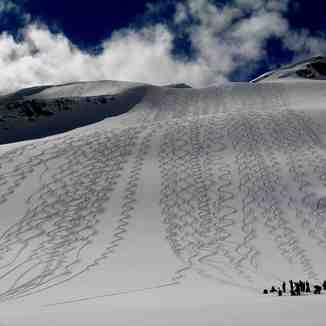 Tracks on Diamond Dust by Bruce Roberts, Campbell Icefield Chalet